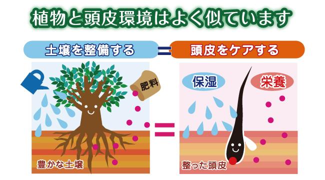 土壌 頭皮 肥料 保湿 栄養 インターナショナルホームメディカル IHM IHM international homemedical
