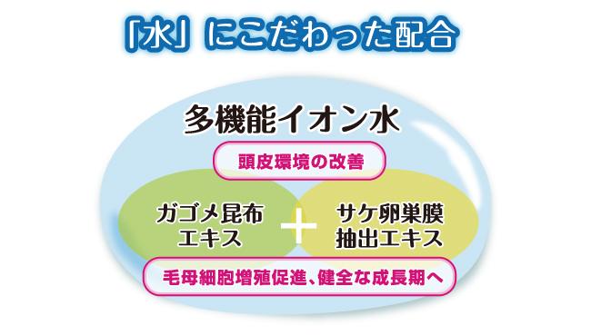 なびき NABIKI 多機能イオン水 ガゴメ昆布エキス 鮭卵巣膜抽出エキス 毛母細胞増殖促進 頭皮環境の改善 インターナショナルホームメディカル IHM IHM international homemedical